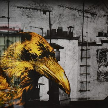 "Lars Tunebo ""Boris and his bird"""