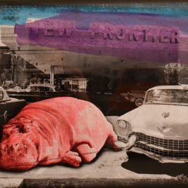 """Lars Tunebo """"Who parked the pink hippo"""""""
