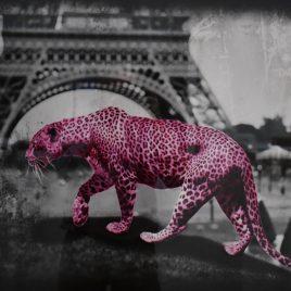 """Lars Tunebo """"Walking through Paris"""""""