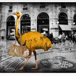 """Lars Tunebo """"Looking for a new handbag"""""""